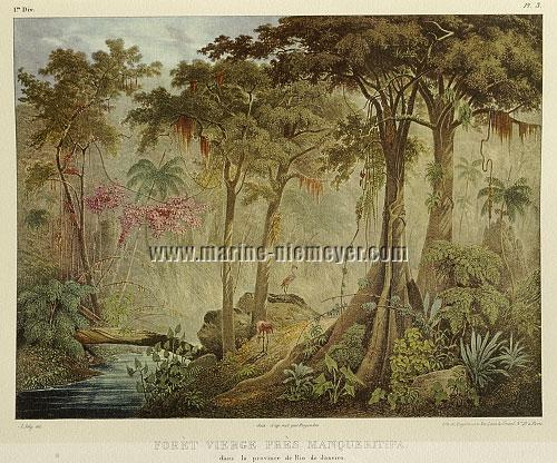 Johann Moriz Rugendas, Brazilian Jungle
