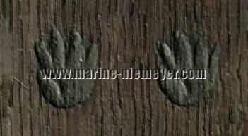 Antwerp Brand: Hands